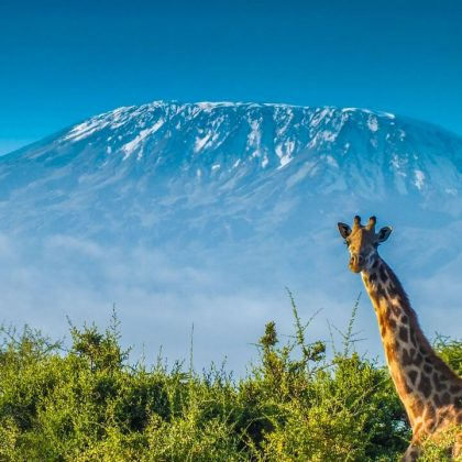 Kilimanjaro  Marangu Route cocacola route 5 days